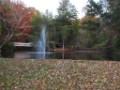 large-lake-9.jpg